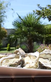 Les huîtres Marennes Oléron